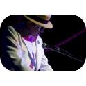 Crocodile Rocket-The Australian Elton John