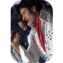 Elvis Alive-2