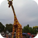 Gemma Giraffe and Ranger Stilt Walkers-3
