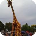 Gemma Giraffe and Ranger Stilt Walkers-3