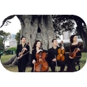 Gloriette String Quartet-3