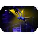 Majestic - Acrobats - Aerial Artists-1