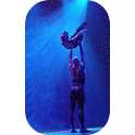 Majestic - Acrobats - Aerial Artists-3