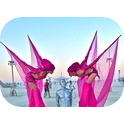 PINK LADIES STILT WALKERS  (VIC)-1