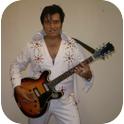 Elvis The Way It Is - Mark Barsenbach-3