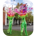 FLOWERS WALKERS  (VIC / NSW)
